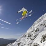 Flying high Buller style