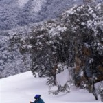 Cross Country skiing at Mt Buller, using Merrijig's accommodation as your base