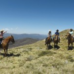 Horse riding in the High Country around Mt Buller
