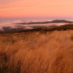 Mt Buller - summer sunset (2)