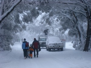 Getting around Mt Buller village