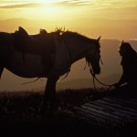 Horse riding in the alpine high country at sunset