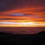 Mt Buller - summer sunset (8)